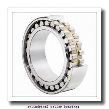 50 mm x 110 mm x 40 mm  FAG NU2310-E-TVP2  Cylindrical Roller Bearings