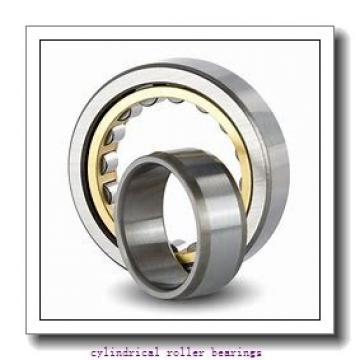 75 mm x 160 mm x 55 mm  FAG NU2315-E-TVP2  Cylindrical Roller Bearings