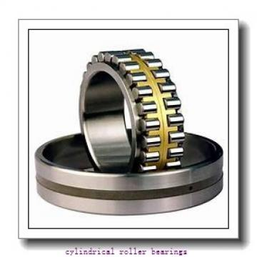35 mm x 62 mm x 14 mm  FAG NU1007-M1  Cylindrical Roller Bearings