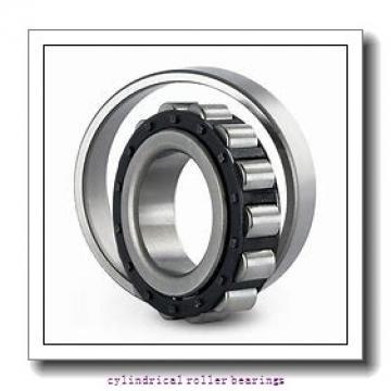 45 mm x 120 mm x 29 mm  FAG NJ409-M1  Cylindrical Roller Bearings