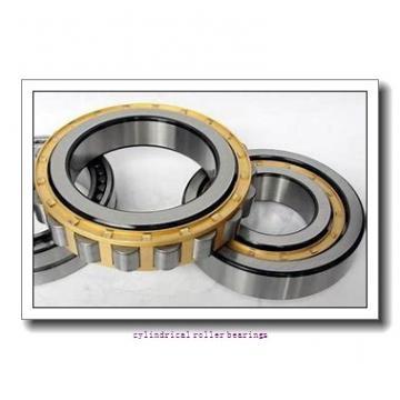 FAG NU2232-E-M1-C3  Cylindrical Roller Bearings
