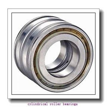30 mm x 55 mm x 13 mm  FAG NU1006-M1  Cylindrical Roller Bearings